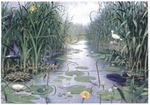 A4 Schoolplaatpuzzel Natuur