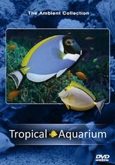 DVD Tropisch Aquarium