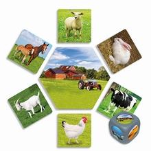 Fotokaarten Waar leven deze dieren?