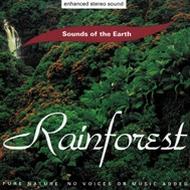 CD Rain Forest