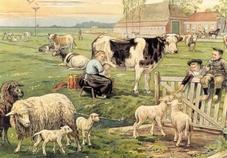 Voorbeeldplaten Het platteland, serie 3