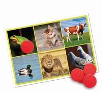Geluiden(lotto) Dieren en de natuur