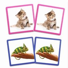 Maxi Memorie Huisdieren