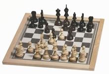 Klein magnetisch schaakspel
